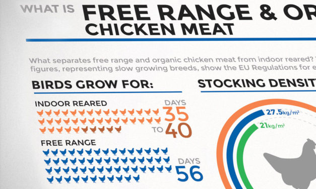 What is Free-Range and Organic?