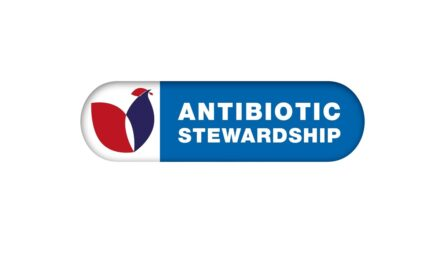BPC Antibiotics Report 2020